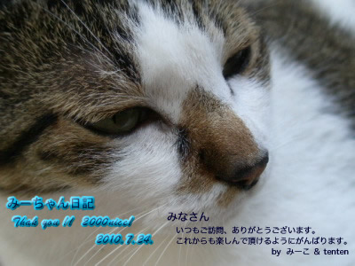 2000nice!みなさんカード.jpg